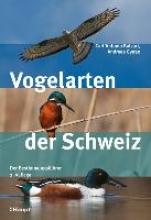 Balzari, Carl`Antonio,   Gygax, Andreas Vogelarten der Schweiz