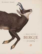 Bregje Hofstede , Bergje