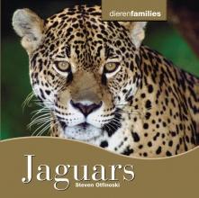 Steven  Otfinofski Jaguar`s