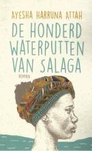 Ayesha Harruna Attah , De honderd waterputten van Salaga