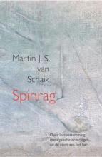 Martin J.S. van Schaik , Spinrag