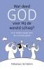 <b>Nikolaas  Sintobin</b>,Wat deed God voor Hij de wereld schiep?