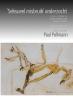 Paul  Pollmann,Kinder misbruik onderzocht