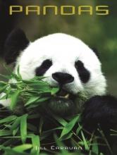 Jill Caravan Pandas