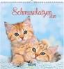 Schmusekatzen 2021, aufstellbarer Postkartenkalender
