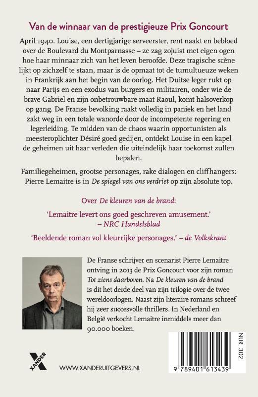 Pierre Lemaitre, Andreas Dijkzeul,De spiegel van ons verdriet