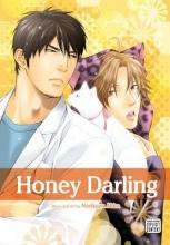 Akira, Norikazu Honey Darling