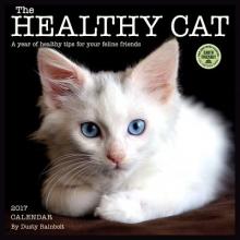 Rainbolt, Dusty Healthy Cat 2017 Wall Calendar