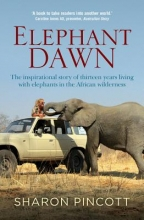 Sharon Pincott Elephant Dawn