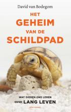 David van Bodegom Het geheim van de schildpad