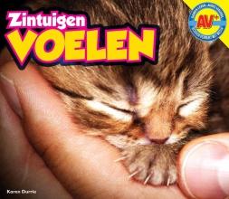 Karen  Durrie AV+ Zintuigen Voelen