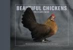 ,Beautiful Chickens Postcard Book