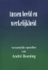 dr. André Beening,Tussen beeld en werkelijkheid