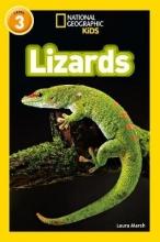 Laura Marsh Lizards
