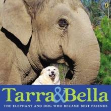 Buckley, Carol Tarra & Bella
