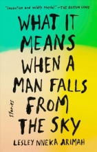 Arimah, Lesley Nneka What It Means When a Man Falls from the Sky
