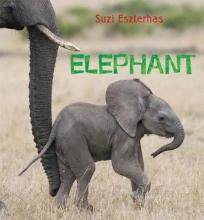 Eszterhas, Suzi Elephant