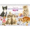 ,<b>Familieplanner week 2018 a4 liggend franciens katten</b>
