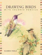 Kaaren Poole Drawing Birds with Colored Pencils