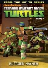 Auman, Brandon,   Burke, Kevin,   Wyatt, Chris Teenage Mutant Ninja Turtles Animated 4