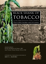 , Black shank of tobacco in the former Dutch East Indies, caused by Phytophthora nicotianae