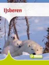 Moniek van Zijl , IJsberen