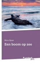 Nico Sjoer Een boom op zee