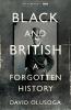 Olusoga David, Black and British