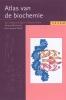 Jan Koolman, Klaus-Heinrich Rohm, Atlas van de biochemie