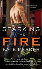 Meader, Kate Sparking the Fire