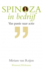 , Spinoza in bedrijf