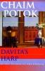 C. Potok,Davita's Harp