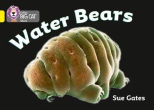Susan Gates Water Bears