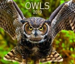 Firefly Books Owls 2019