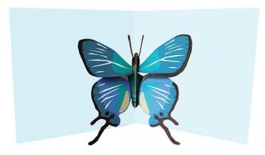 2totango Blue Butterfly