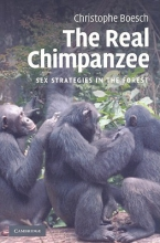Christophe Boesch The Real Chimpanzee