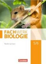 Hampl, Udo,   Herrmann, Marianne,   Oberschelp, Katrin,   Pohlmann, Anke Fachwerk Biologie 5./6. Schuljahr. Schülerbuch Niedersachsen