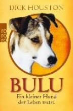 Houston, Dick Bulu