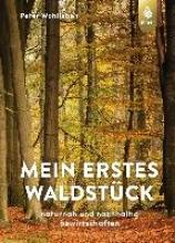 Wohlleben, Peter Mein erstes Waldstück