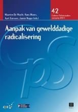 , Aanpak van gewelddadige radicalisering