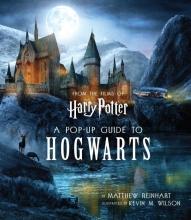 Matthew  Reinhart Harry Potter A Pop-Up Guide to Hogwarts
