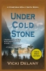 Delany, Vicki,Under Cold Stone