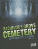 Chandler, Matt,Bachelor`s Grove Cemetery and Other Haunted Places of the Midwest