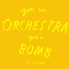 <b>Cig  Harvey</b>,You An Orchestra You A Bomb