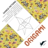 Pepin Van Roojen ,Chinese Patterns - Origami Book