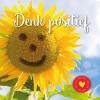 Gerard de Ley ,Denk positief