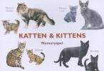 <b>M. George</b>,Katten & Kittens