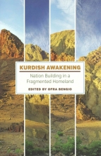 Kurdish Awakening: Nation Building in a Fragmented Homeland