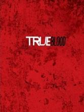 True Blood Journal