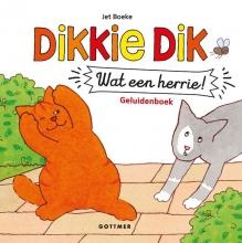 Jet Boeke , Wat een herrie!